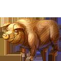Coll zodiac pig