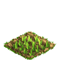 Wheat plant ph1.png