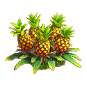 File:Pineapple plant.png