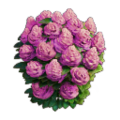 Res bush pink flowers 2.png
