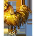 Coll zodiac cock