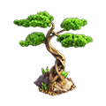 Res bonsai 1.png