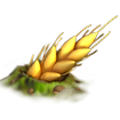 Res giant ear 1.png