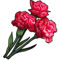 Coll soldier carnations