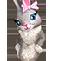 Clothesf rabbit costume