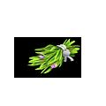 Find-Grass 1