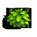 Res cinnamon bush 1.png