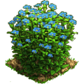 Flax plant ph3.png