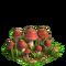 Mushrooms plant ph3