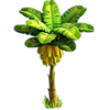 Wild crop (resource)