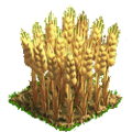 Wheat plant ph4.png