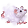 Cloud mouse