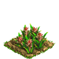 Pineapple plant ph2.png