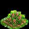 Pineapple plant ph2