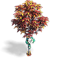 Res birch red 4 vizor.png