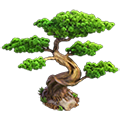 Res bonsai 3.png