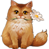 Coll spring cat in love