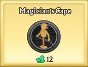 Magician's Cape