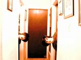 D6 (Music Video)
