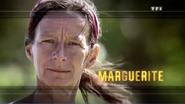 Marguerite générique