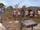 Tribu réunifiée (Île au trésor)