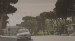 Рекс на дороге 1