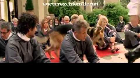 """Rex chien flic - Extrait Rex 5 (saison 15) """"L'intruso"""""""