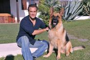 Рекс и Андреа Костантини