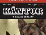 Кантор — собака-детектив