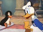 Donald Duck Le Pingouin de Donald