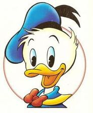 Donald by Marco Rota (3)