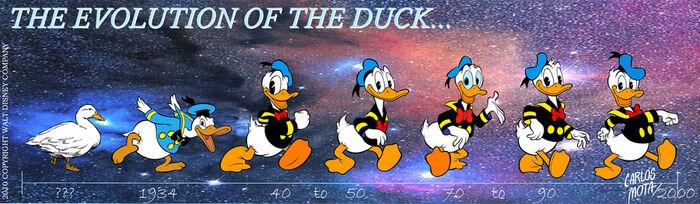 Donald duck evolution by carlosmota-d4esy00