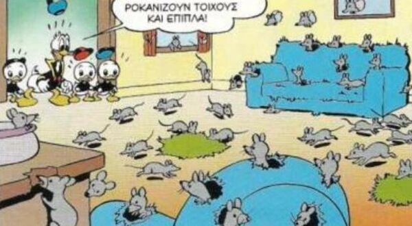 Ορδές ποντικών μέσα στο σπίτι