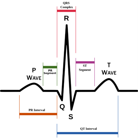 File:QRS.png