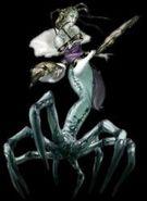Reine algenie-Castlevania Legacy of Darkness 01