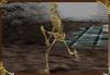 Guerrier Squelette-Castlevania 64-LoD
