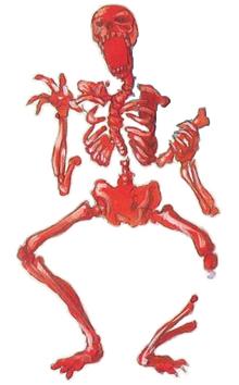 Squelette-rouge-Castlevania-série-Image 01