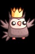 Owl shiny