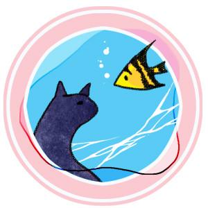 Cat meet fish