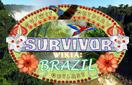 BrazilBanner