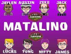 MatalinoFlag