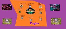 PugitaFlag