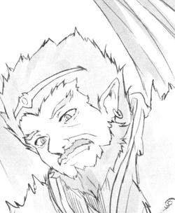Zeldis Light Novel