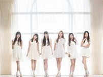 SHA SHA debut group photo