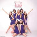 CLC Chamisma Type C cover.png
