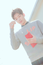 Wonwoo SEVENTEEN Love & Letter photo