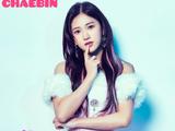 Chaebin
