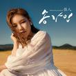 Song Ga In Again digital album cover