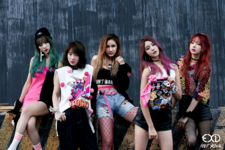 EXID Hot Pink group teaser