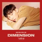 VIINI Dimension promo photo 3
